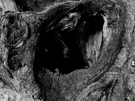 Hueco 1  72pp TEXT.jpg