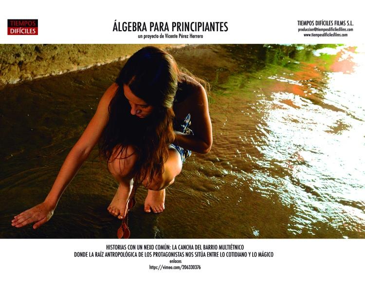 ALGEBRA IMAGINARIOS 34 LuciaAcequia72pp.jpg