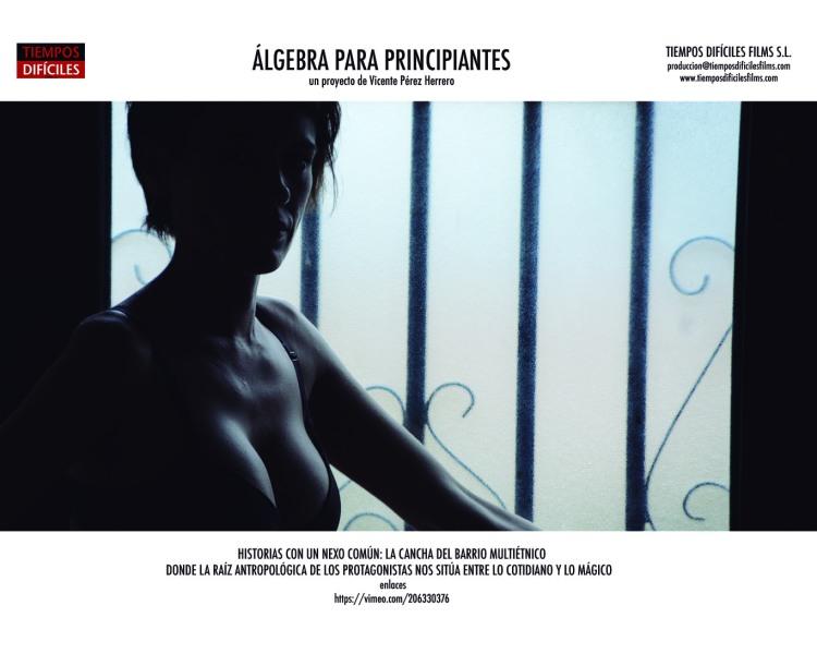ALGEBRA IMAGINARIOS 40 Silvia 72pp.jpg
