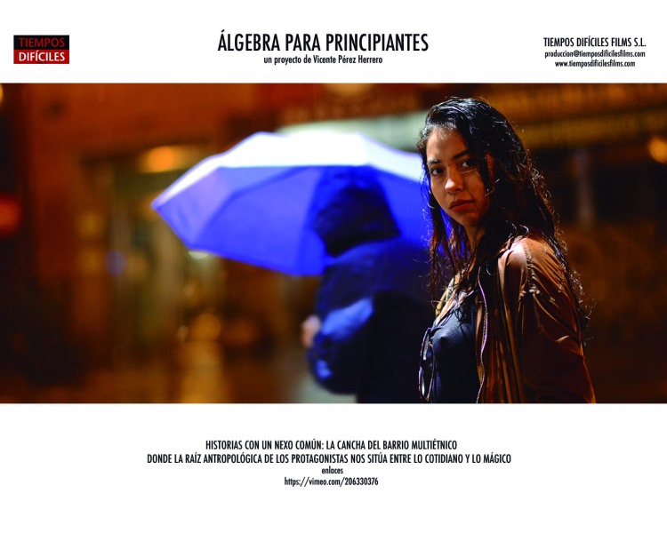 ALGEBRA IMAGINARIOS Vivian 72pp copia.jpg